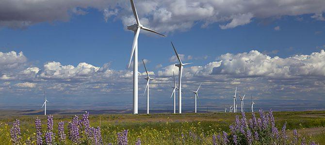 Las energías limpias, única solución para el planeta