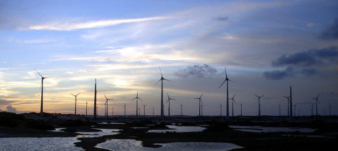 Locos por el viento… ¡Y su energía!