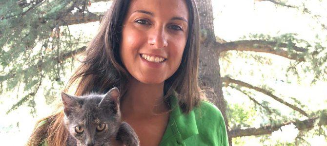 Tokio: la historia de la gata sin rabo que rondaba por Iberdrola